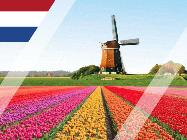 Higher education in Netherlands